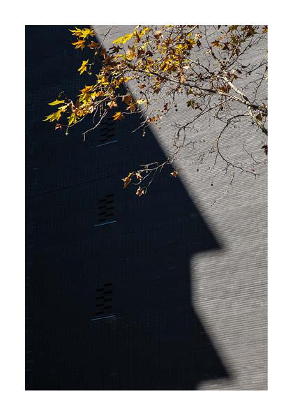 http://photoblog.pedroarroyo.es/files/gimgs/59_maquetaderivapedrov415.jpg