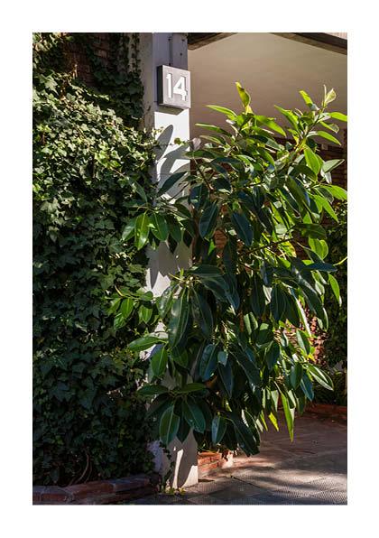 http://photoblog.pedroarroyo.es/files/gimgs/59_maquetaderivapedrov435.jpg