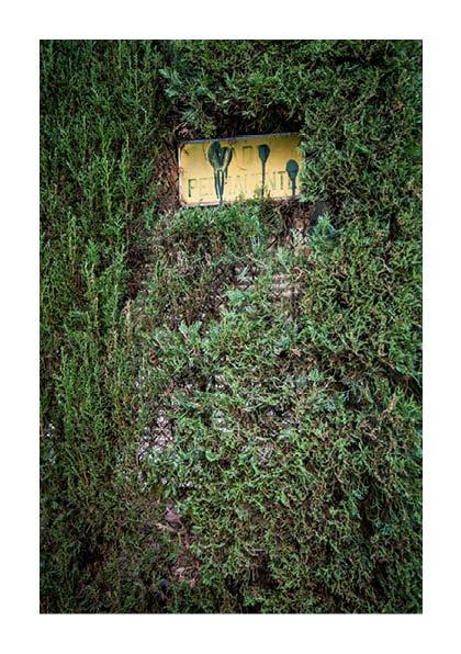 http://photoblog.pedroarroyo.es/files/gimgs/59_maquetaderivapedrov443.jpg